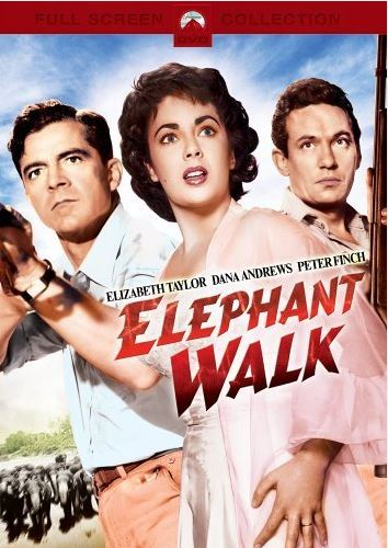 A wonderful film with a young Elizabeth Taylor - in my head it is in black and white.