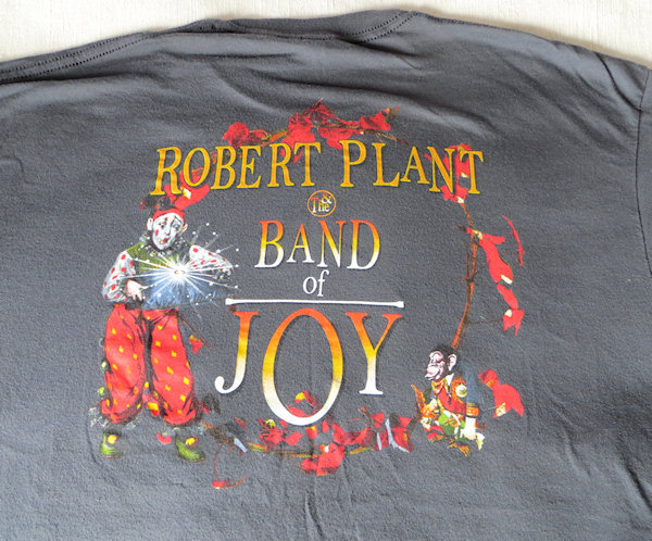 And how pretty is this - from a gig with the amazing Robert Plant in New York City.