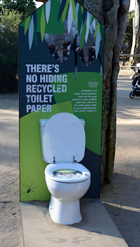 In Melbourne Zoo recfently - a campaign to promote recycled toilet paper. The kids loved it - giggling at the open-air loos.